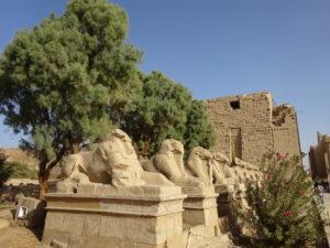 カルナック神殿とルクソール神殿を繋ぐスフィンクス参道