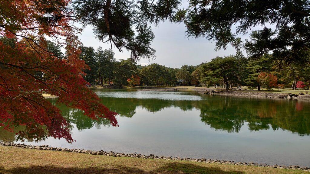 毛越寺の浄土庭園