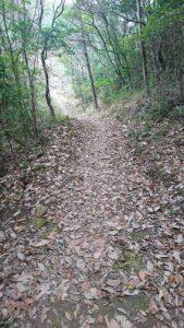 島根県益田市の唐音の蛇岩への道のり
