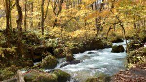 奥入瀬渓流の阿修羅の流れ